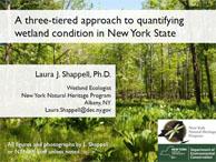 NYNHP 3-Tiered approach to quantifying wetland condition in New York State