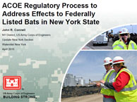 ACOE Regulatory Process to Address Effects to Federally Listed Bats in New York State